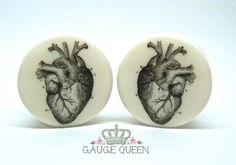 Anatomical Heart Plugs