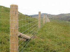 High Tensile Field Fence - Woven Wire Fence – Fixed Knot Fence Pasture Fencing, Horse Fencing, Farm Fence, Stock Fencing, Garden Fencing, Deer Fence, Fence Gate, Field Fence, Champs