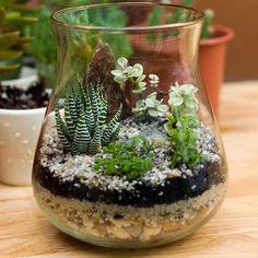 Charming Succulent Indoor Garden Ideas 2019 - Page 28 of 64 - DIY Arts wedding Terrarium succulentes