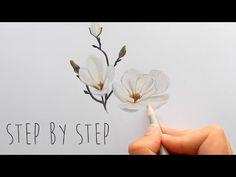 Step by Step | How to draw, color a white Magnolia flower with colored pencils | Emmy Kalia - YouTube