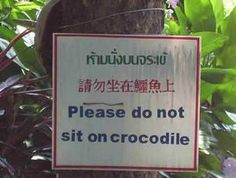 Please Do Not Sit On Crocodile sign
