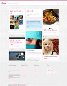 Clippy Wordpress Theme by Site5.