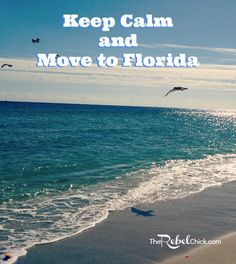 10 Reasons to Move to Florida I was born and pretty much raised in Miami, aside from a short stint in North Carolina and Kentucky when I was Seeing as how I can't even remember that time, I am not counting it. Florida Girl, Florida Living, Florida Home, South Florida, Miami Living, Melbourne Florida, Moving To Florida, Florida Travel, Florida Beaches