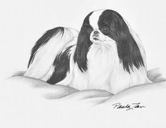 Laurelwood Japanese Chin 2014 Plate