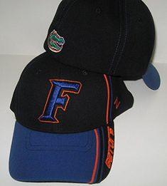 eee412e01b0 13 Best Florida Gators Hats images