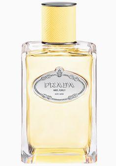 Infusion de Mimosa Prada perfume - una nuevo fragancia para Mujeres 2016