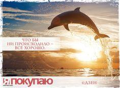 «Что бы ни происходило — всё хорошо». - © Дзен http://www.yapokupayu.ru