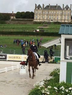 BEAUTIFUL SINEAD HALPIN / TEAM USA EVENTING AT THE WEG 2014  #sineadhalpineventing #protectedbyKEP