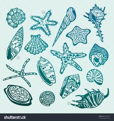 stock-vector-set-of-graphic-underwater-creature-seashells-and-starfishes-vector-illustration-352673501.jpg (1500×1591)