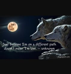 January full moon is the wolf moon... prayers for the beast that defines me.