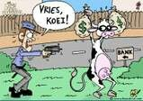 Kaaskrul Afrikaans, Comics, Funny, Fictional Characters, Education, School, Wtf Funny, Comic Book, Teaching