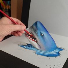 12-Shark-Sandor-Vamos-3D-Optical-Illusions-Anamorphic-Drawings-Videos-www-designstack-co