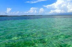 Grand Bahama blues | SBPR