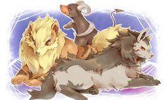 Pets, Arcanine, Houndoom, Mightyena - Pokémon