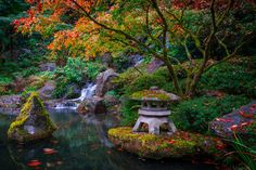 Japanese Gardens, Portland, Oregon ✯ ωнιмѕу ѕαη∂у