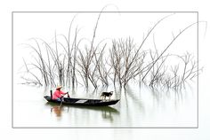 Da Mi lake - Bao Loc, Lam Dong