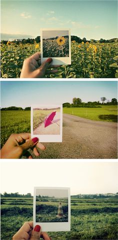 25 Creative Examples of Polaroids in Pictures - My Modern Met