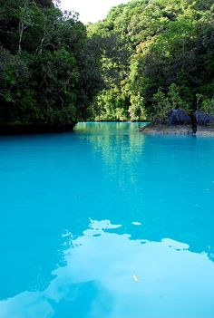 Turquoise Sea, Palau photo via depreciated