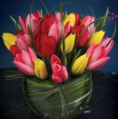 Tulip in case centrepieces