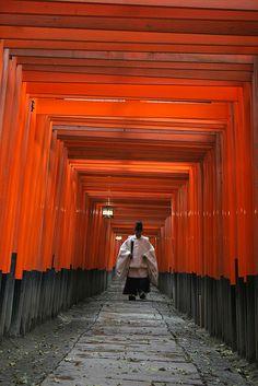 the priest walking through the torii gates at Fushimi Inari shrine, Japan