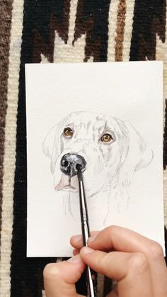 Watercolor Painting Techniques, Watercolour Tutorials, Cool Art Drawings, Animal Drawings, Watercolor Animals, Watercolor Paintings, Dog Drawing Tutorial, Polychromos, Dog Nose