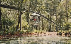 DUNNELLON, Florida Forest Flite, World's most unusual - bidStart (item 56287945 in Postcards. Marion County Florida, Old Florida, Dunnellon Florida, Florida Springs, Gothic Aesthetic, Adventure Travel, Road Trip, Places To Visit, World