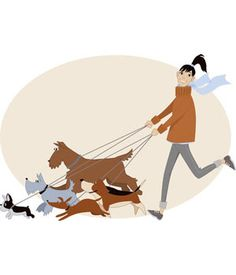 dog walker walking five dogs on leash. Or maybe the five dogs are…