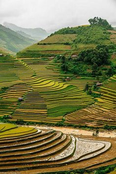 Travel with Cosianatour and get designed Vietnam tours just for you. Enjoy private guides & custom tours to see the variety of Vietnam from Hanoi to Hochiminh City by your own. Places Around The World, Oh The Places You'll Go, Travel Around The World, Places To Travel, Places To Visit, Around The Worlds, Vietnam Voyage, Vietnam Travel, Asia Travel