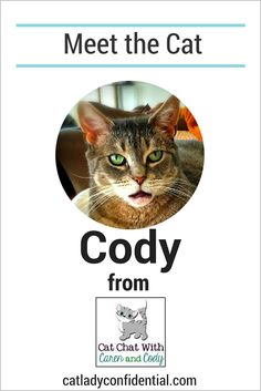 An interview with the adorable Cody From the Blog Cat Chat With Caren and Cody