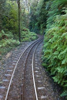 Heading back to Queenstown, West Coast Wilderness Railway, Tasmania, 1st June 2005.