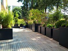 Plant containers for a terrace - Garten - Design RatBalcony Plants tan Furniture Outdoor Decor, Container Plants, Green Roof Garden, Outdoor Living, Rooftop, Penthouse Garden, City Garden