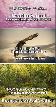Learn Japanese: 30 Japanese Proverbs & Sayings. Part 2 Japanese Song, Kanji Japanese, Japanese Quotes, Japanese Phrases, Study Japanese, Japanese Names, Japanese Words, Japanese Culture, Japanese Language Learning