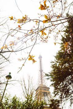 See Paris like a Pro