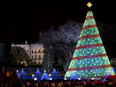 The 2014 National Christmas Tree stands near the White House in Washington, D.C.