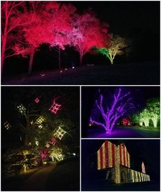 Nashville christmas lights on elmington 800x533 2 holiday nashville christmas lights on elmington 800x533 2 holiday outdoor lighting by outdoor lighting perspectives of nashville pinterest nashville aloadofball Choice Image
