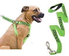 Friendly Color Coded Green L-XL Non pull Dog Harness and 4 Foot Leash Set (Known As Friendly) Prevents Accidents By Warning Others of Your Dog in Advance Strong High Quality, Bestseller By FriendlyDogCollarsFriendly Color Coded Green L-XL Non pull Dog Harness and 4 Foot Leash Set (Known As Friendly) Prevents Accidents By Warning Others of Your Dog in Advance Strong High Quality, Bestseller By FriendlyDogCollars