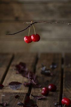 scarlet red rouge  ..  X ღɱɧღ  ||