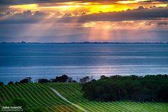 Dih jemajoča #Istra // Beautiful and #breathtaking #Istria
