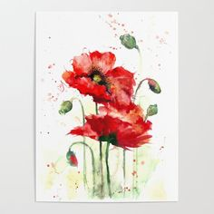 Watercolor flowers of aquarelle poppies Art Print by Maryami - X-Small Watercolor Poppies, Watercolor Artwork, Watercolor Cards, Poppy Flower Painting, Flower Art, Remembrance Day Art, Watercolors, Ideas, Watercolor Artists