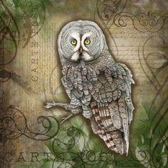 great-grey-owl-postage