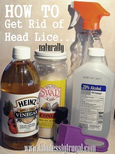 How To Get Rid of Head Lice.  A natural and homemade remedy that works and is cheaper than store bought treatments!  Also ideas for preventing head lice, and treating linens and furniture. Just in case you ever need to know!