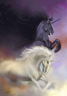 Night and Day by Hagge on deviantART - Me and Katie as unicorns. Unicorn And Fairies, Unicorn Fantasy, Unicorn Horse, Unicorns And Mermaids, Unicorn Art, Fantasy Art, White Unicorn, Mythical Creatures Art, Mythological Creatures