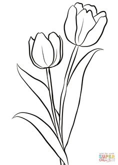 Tulip Template Printable Coloring Pages for Kids craft