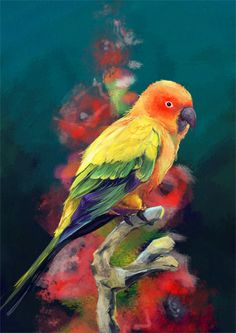 I am absolutely in love with birds and so i had to draw one... I may need to edit this in the near future but for now it is done... i'm really happy with the way the sun conure turned out but the b...