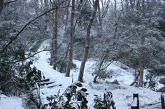 046/365 New Snow