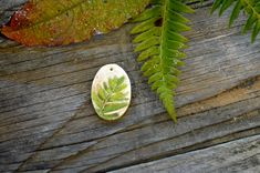 Our woods are filled with ferns - bright green in the spring, deep green in the summer, and tinged with brown come autumn. These fern pendants are layered with color between multiple firings and finished with a clear glaze. Price is for one 4 cm long pendant.