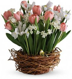 Tulip Song ~ As if a beautiful spring bouquet arranged in a nest-like woven basket wasn't cause enough for celebration, this arrangement has even more! A beautiful yellow bird rests among its blossoms.