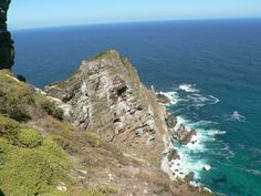 See Mother Nature's plant life with the Cape Peninsula tour package On this single day round-trip African Penguin, Boulder Beach, Table Mountain, Plant Species, Round Trip, Nature Reserve, Cape Town, Bouldering, Botanical Gardens