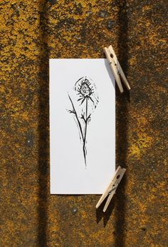 clover cloverfolwer card grass herb herbs leaf leaves lino love nature pagan plant print sample simple stamp wild wildchild naturelove paganlove art besttry klaudiaakcilkis paganbeauty blackandwhite blackwhite creation flower flowers graphics linocut linoprint monochromatic monochrome naturalbeauty naturelover printing printmaking traditional traditionalart traditionalartwork naturelovers printset akcilkis flauteflaute