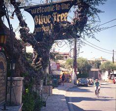 Tsilivi (Zakynthos, Greece)